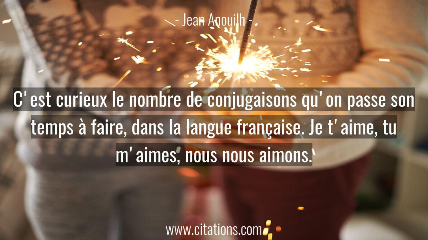 C'est curieux le nombre de conjugaisons qu'on passe son temps à faire, dans la langue française. Je t'aime, tu m'aimes,...