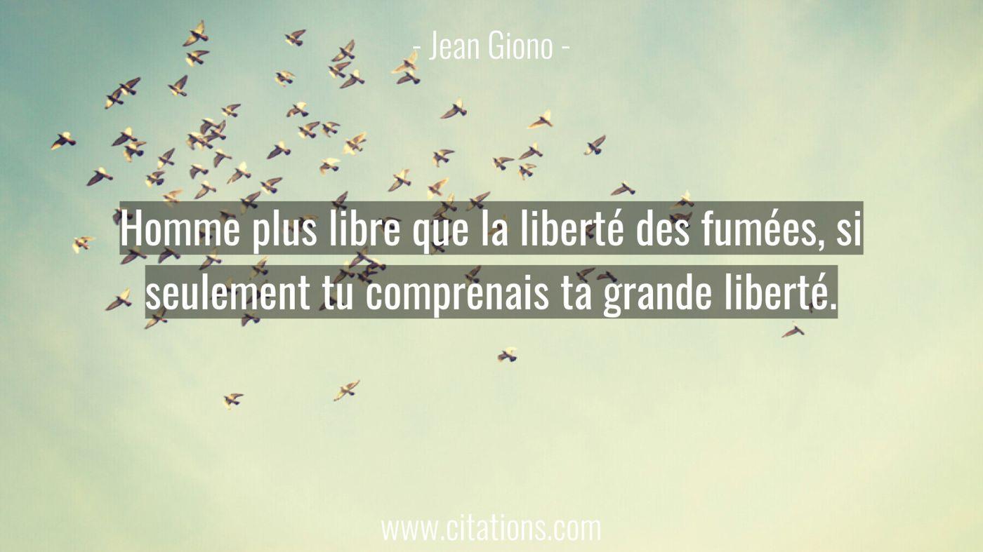 Homme plus libre que la liberté des fumées, si seulement tu comprenais ta grande liberté.