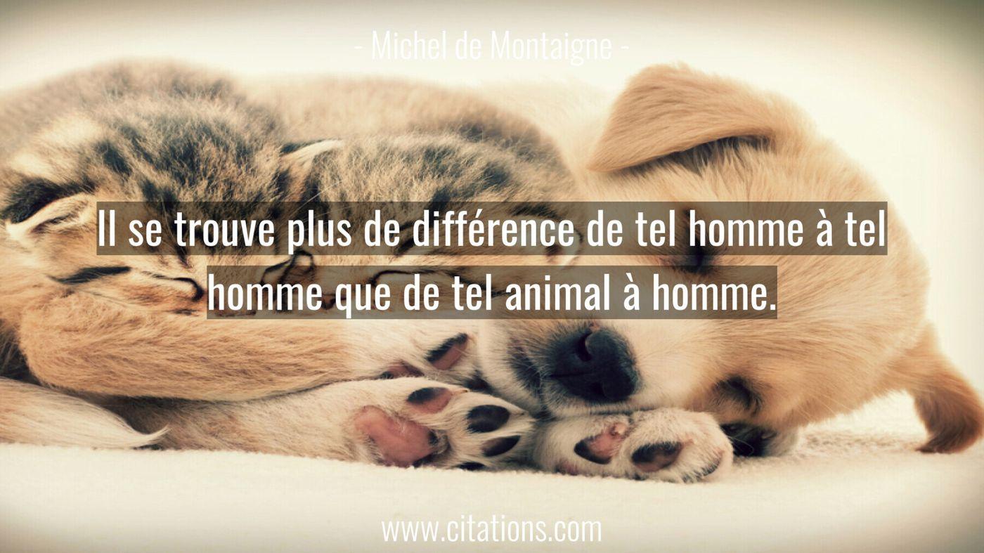 Il se trouve plus de différence de tel homme à tel homme que de tel animal à homme.