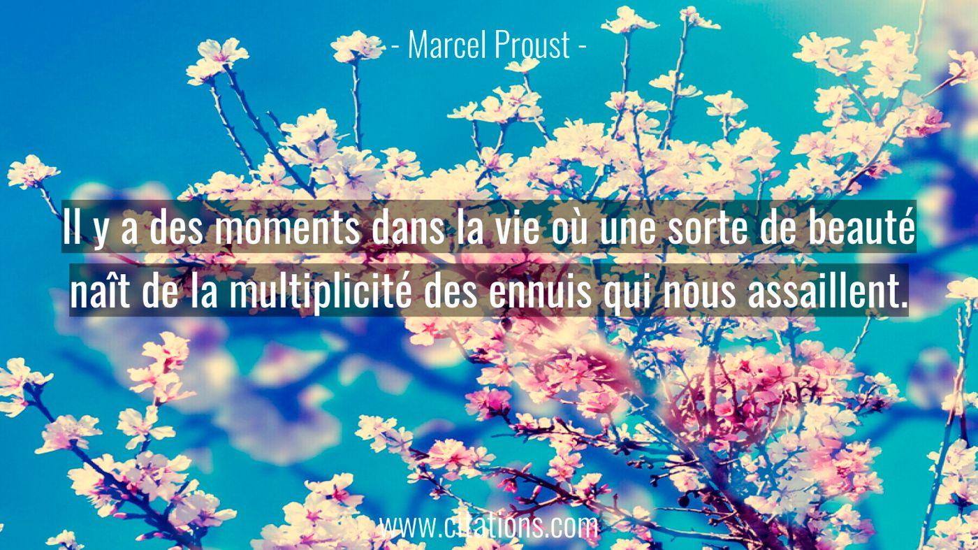 Il y a des moments dans la vie où une sorte de beauté naît de la multiplicité des ennuis qui nous assaillent.