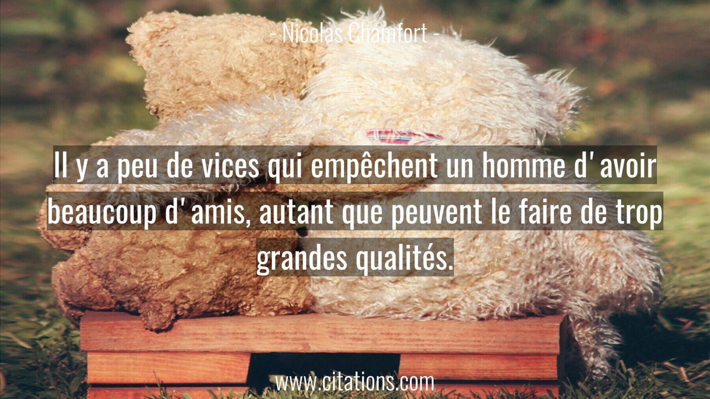Il y a peu de vices qui empêchent un homme d'avoir beaucoup d'amis, autant que peuvent le faire de trop grandes qualités...