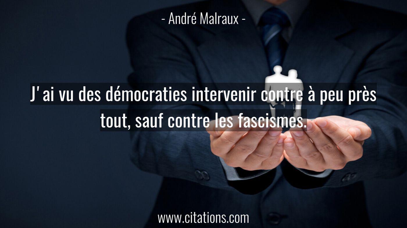 J'ai vu des démocraties intervenir contre à peu près tout, sauf contre les fascismes.