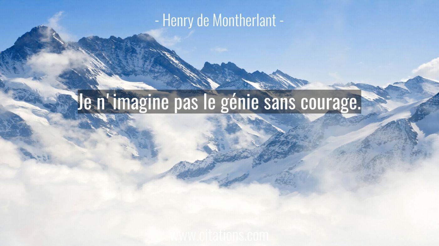 Je n'imagine pas le génie sans courage.
