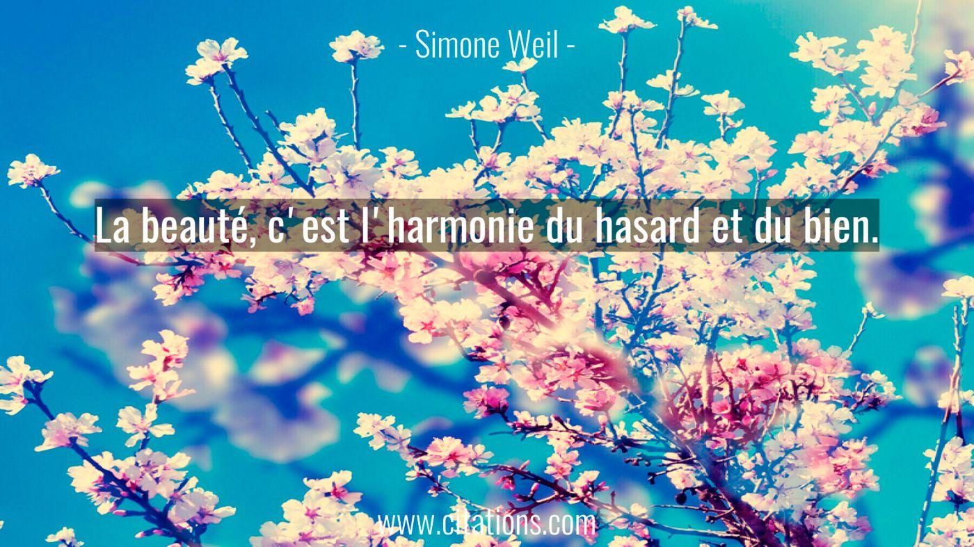 La beauté, c'est l'harmonie du hasard et du bien.