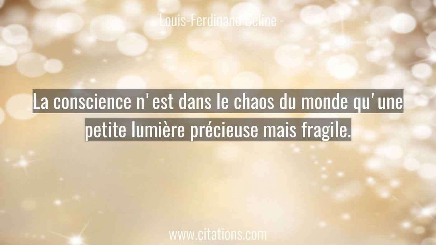 La conscience n'est dans le chaos du monde qu'une petite lumière précieuse mais fragile.