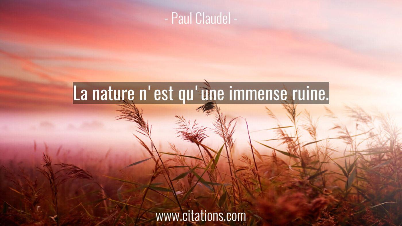 La nature n'est qu'une immense ruine.