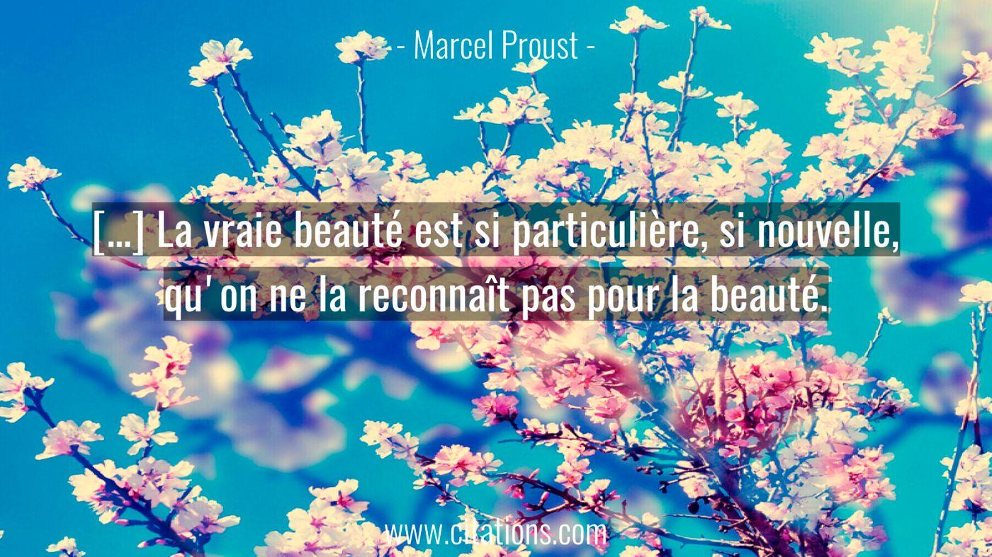 […] La vraie beauté est si particulière, si nouvelle, qu'on ne la reconnaît pas pour la beauté.