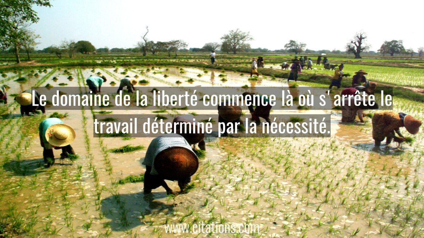 Le domaine de la liberté commence là où s'arrête le