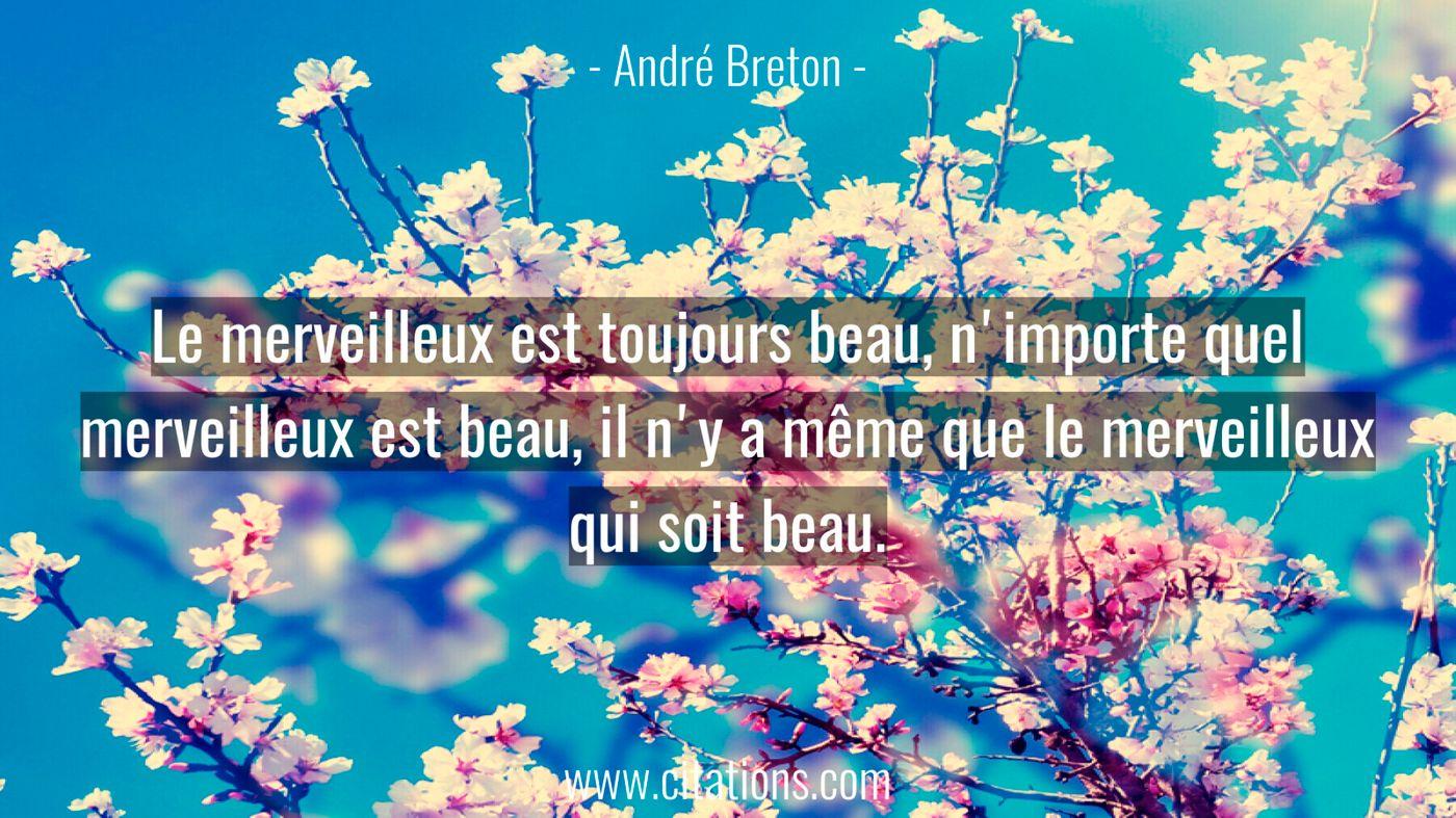 Le merveilleux est toujours beau, n'importe quel merveilleux est beau, il n'y a même que le merveilleux qui soit beau.