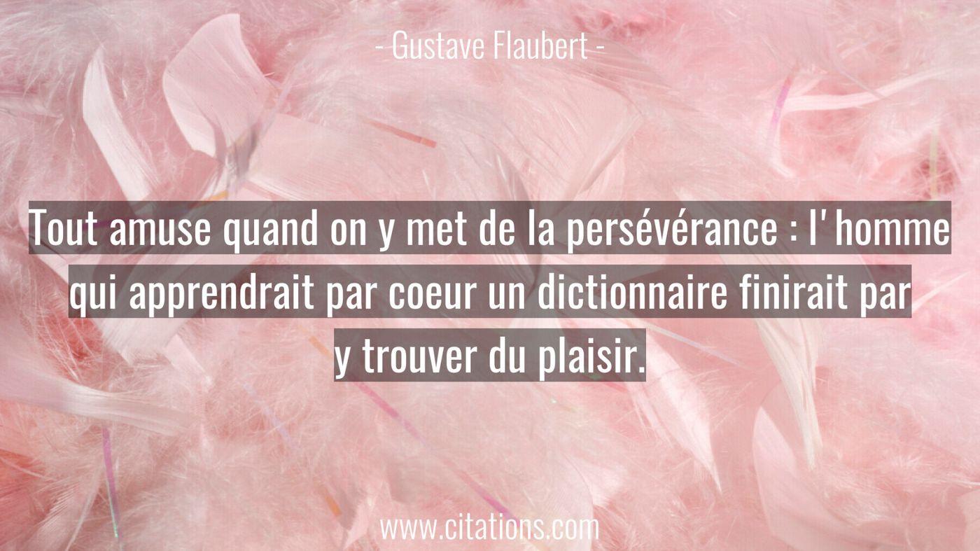 Tout amuse quand on y met de la persévérance : l'homme qui apprendrait par coeur un dictionnaire finirait par y trouver...