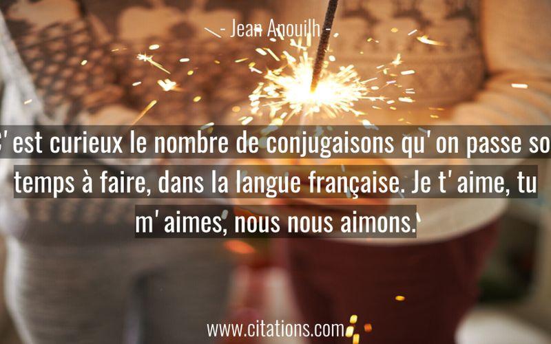 C'est curieux le nombre de conjugaisons qu'on passe son temps à faire, dans la langue française. Je t'aime, tu m'aimes, nous nous aimons.