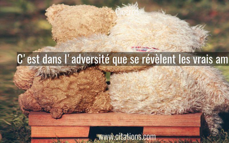 C'est dans l'adversité que se révèlent les vrais amis.