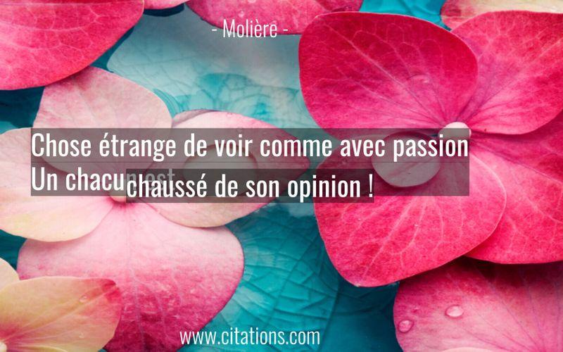 Chose étrange de voir comme avec passion Un chacun est chaussé de son opinion !