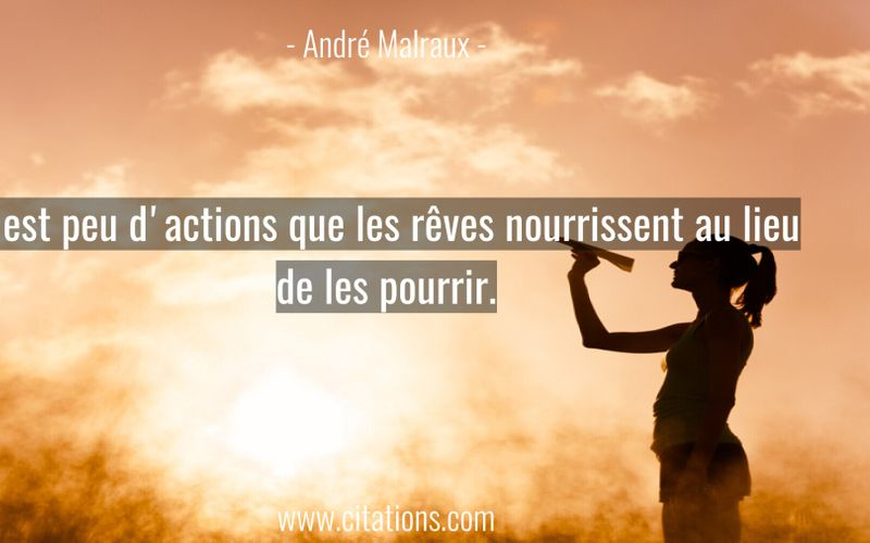 Il est peu d'actions que les rêves nourrissent au lieu de les pourrir.