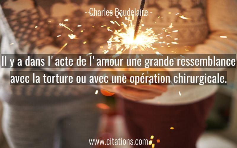 Il y a dans l'acte de l'amour une grande ressemblance avec la torture ou avec une opération chirurgicale.