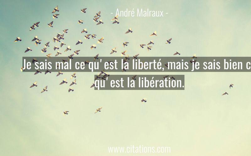Je sais mal ce qu'est la liberté, mais je sais bien ce qu'est la libération.