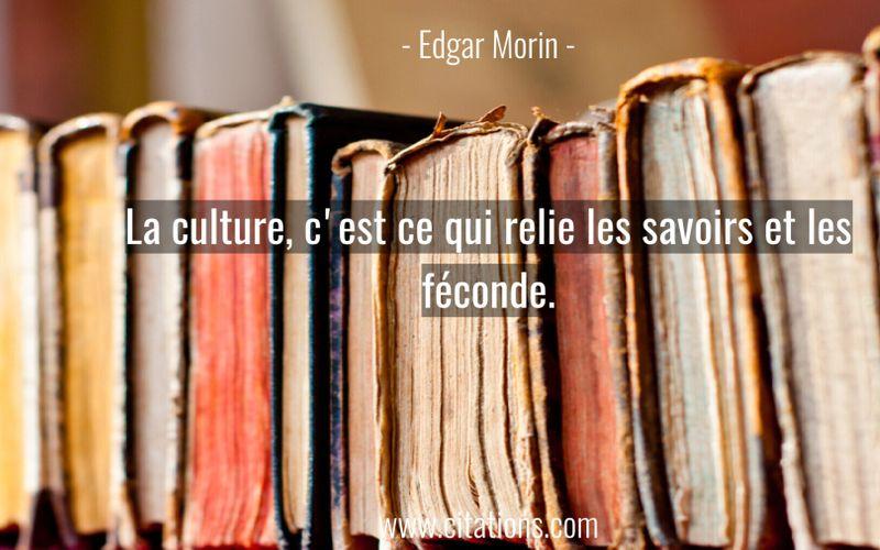 La culture, c'est ce qui relie les savoirs et les féconde.