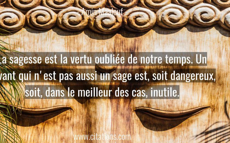 La sagesse est la vertu oubliée de notre temps. Un savant qui n'est pas aussi un sage est, soit dangereux, soit, dans le meilleur des cas, inutile.