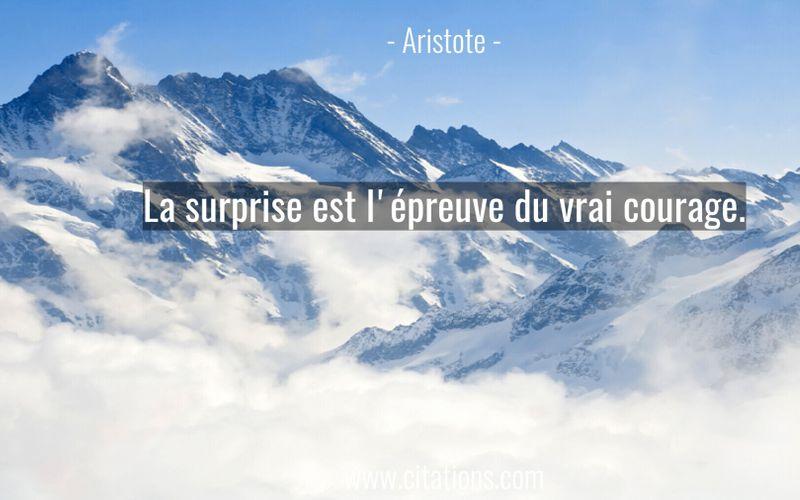 La surprise est l'épreuve du vrai courage.
