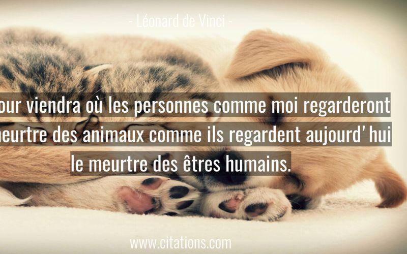 Le jour viendra où les personnes comme moi regarderont le meurtre des animaux comme ils regardent aujourd'hui le meurtre des êtres humains.