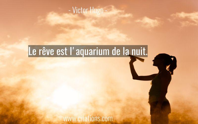 Le rêve est l'aquarium de la nuit.