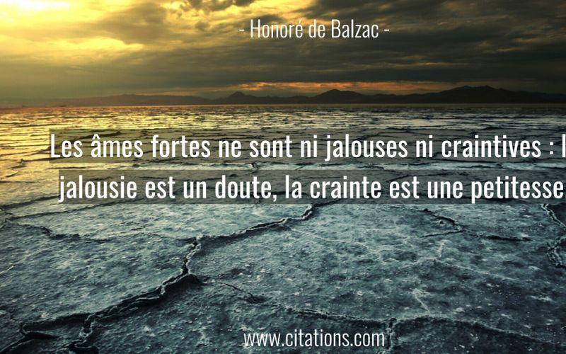 Les âmes fortes ne sont ni jalouses ni craintives : la jalousie est un doute, la crainte est une petitesse.