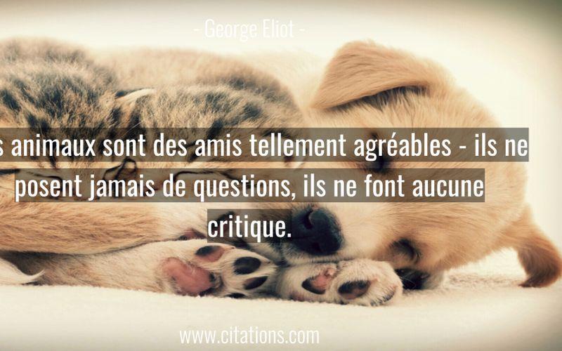 Les animaux sont des amis tellement agréables - ils ne posent jamais de questions, ils ne font aucune critique.