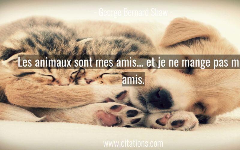 Les animaux sont mes amis... et je ne mange pas mes amis.
