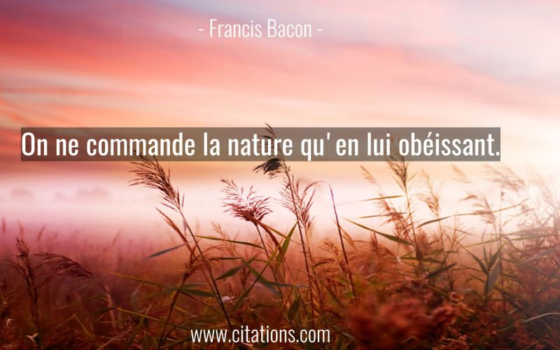 On ne commande la nature qu'en lui obéissant.