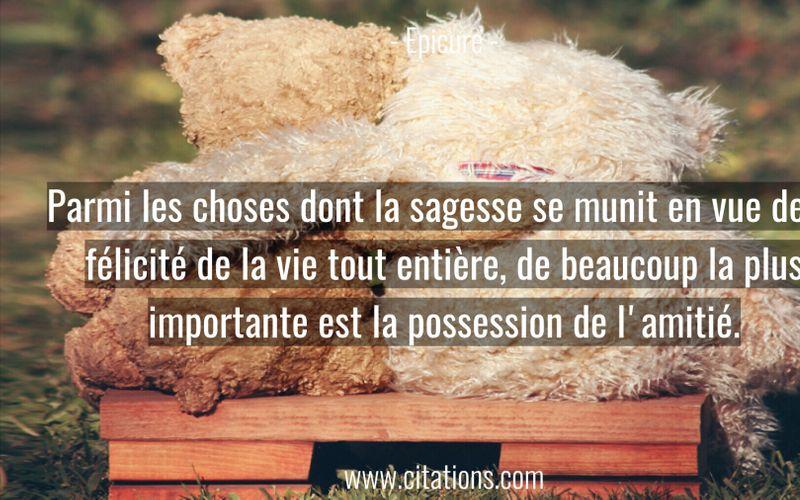 Parmi les choses dont la sagesse se munit en vue de la félicité de la vie tout entière, de beaucoup la plus importante est la possession de l'amitié.