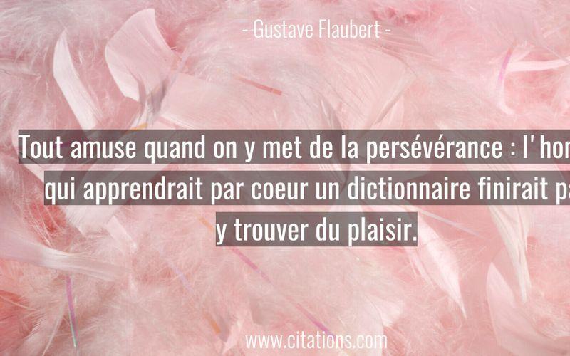 Tout amuse quand on y met de la persévérance : l'homme qui apprendrait par coeur un dictionnaire finirait par y trouver du plaisir.