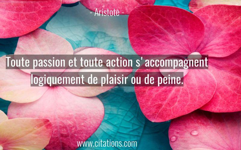 Toute passion et toute action s'accompagnent logiquement de plaisir ou de peine.