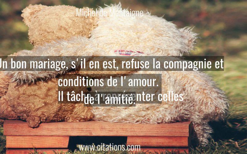 Un bon mariage, s'il en est, refuse la compagnie et conditions de l'amour. Il tâche à représenter celles de l'amitié.