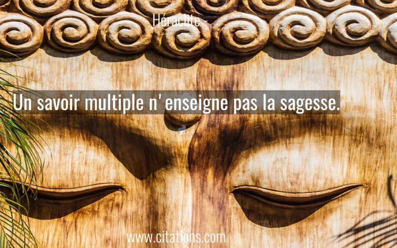 Un savoir multiple n'enseigne pas la sagesse.